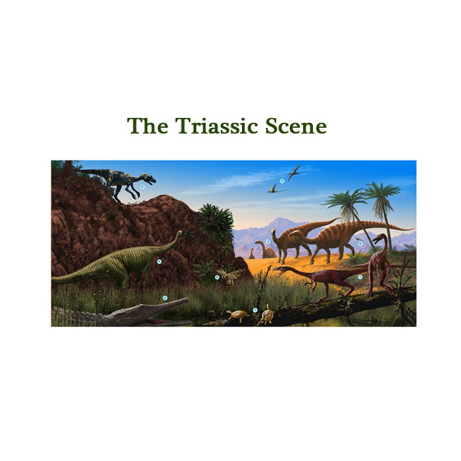 A timeline poster - Triassic scene.