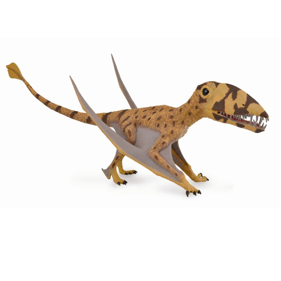 The CollectA Supreme Deluxe Dimorphodon flying reptile model.