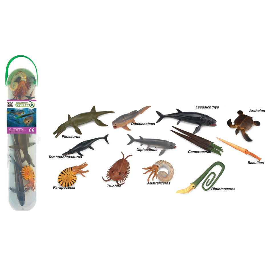 CollectA box of mini prehistoric marine animals.