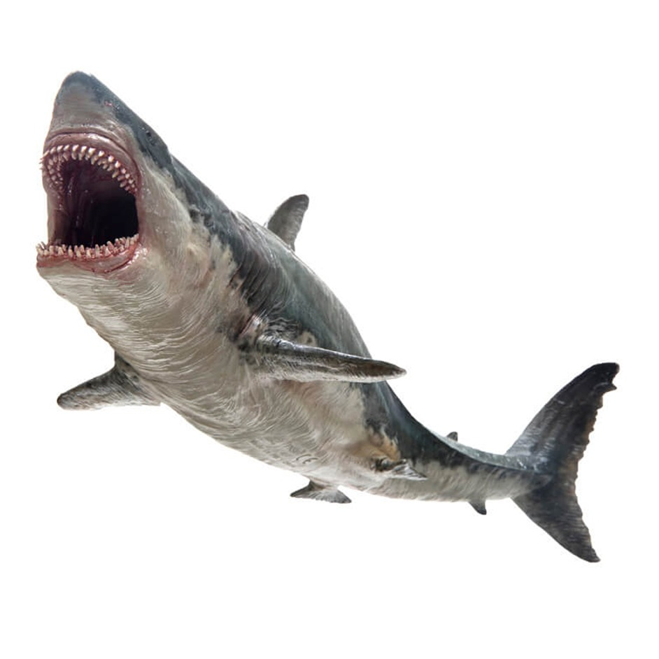 PNSO Age of Dinosaurs Megalodon model.