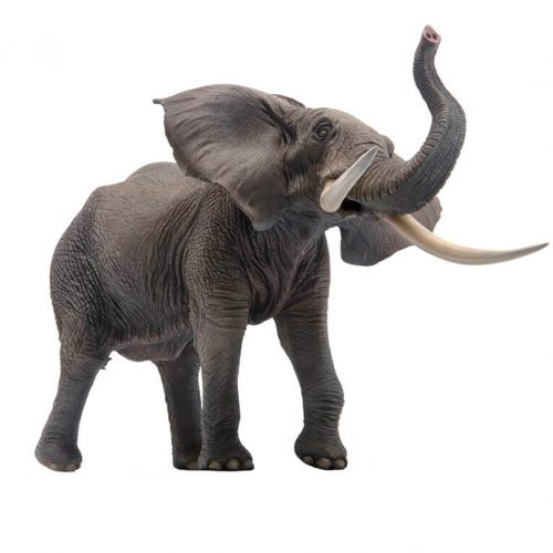 PNSO African elephant model.