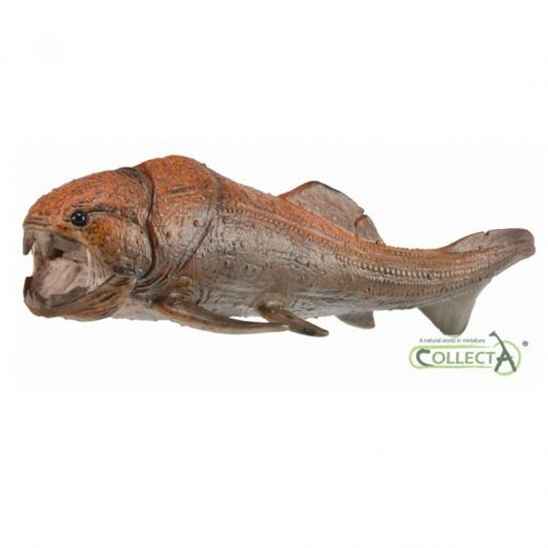 CollectA Dunkleosteus Deluxe 1:20 scale.