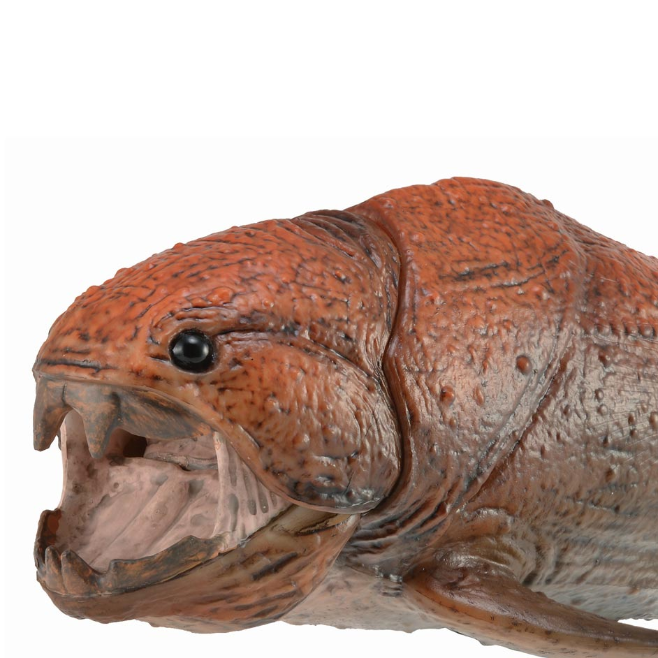 CollectA Deluxe Dunkleosteus model (1:20 scale).