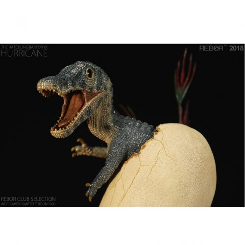 "Limited edition Rebor Hatching Baryonyx ""Hurricane""."