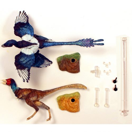 The Contents of the Beasts of the Mesozoic Eastern Pack.