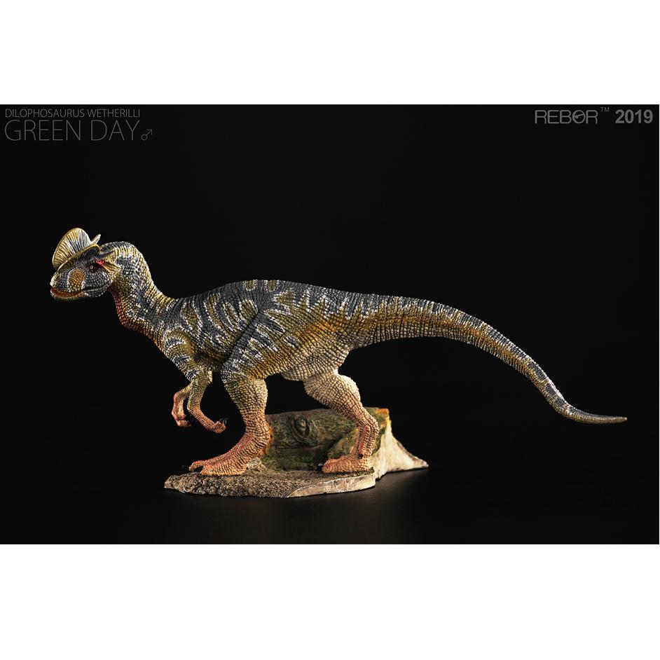 Rebor Dilophosaurus (Green Day).