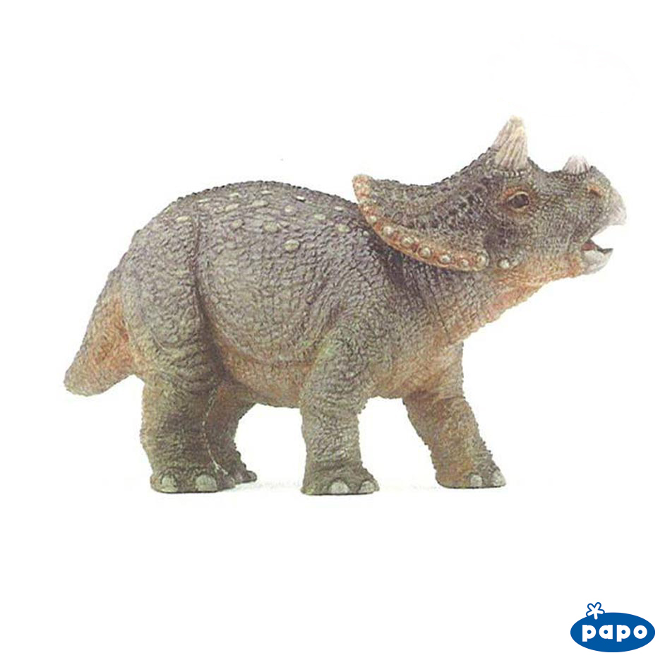 Papo baby Triceratops dinosaur model