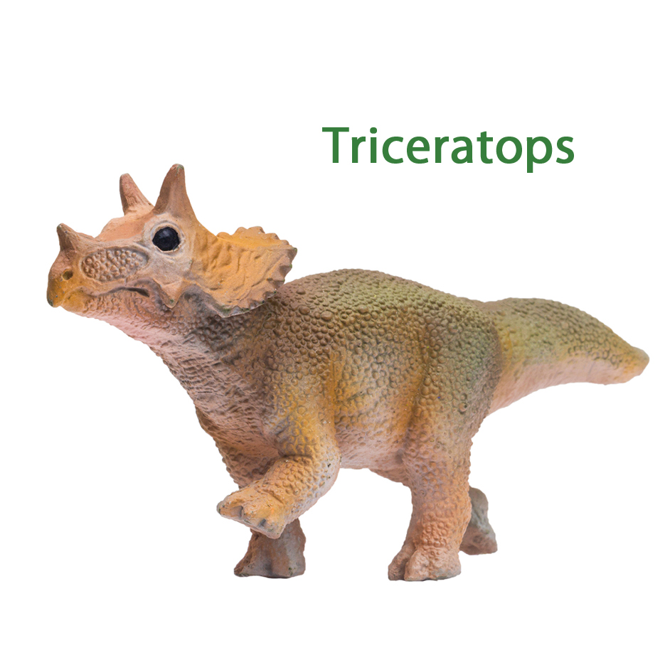 PNSO Age of Dinosaurs Toys little Triceratops
